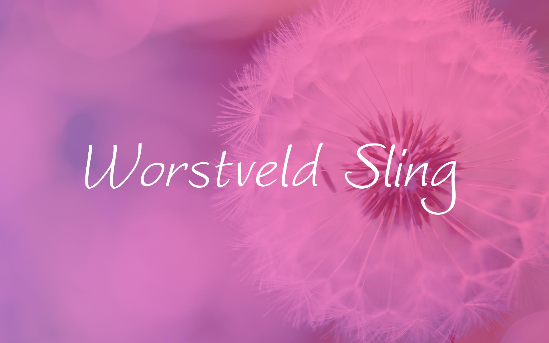 free-ucretsiz-worstveld-sling-el-yazisi-fontu