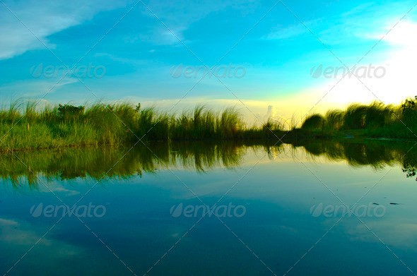 nature-photo